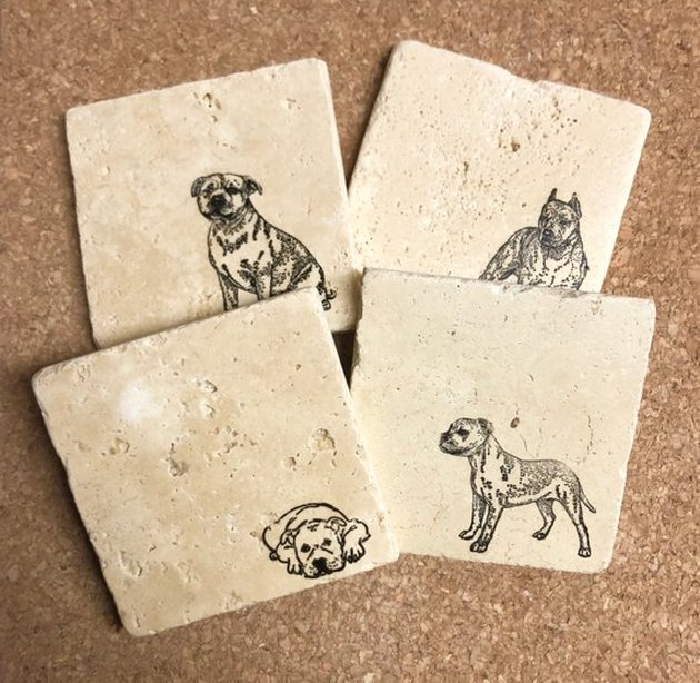 pit bull coasters