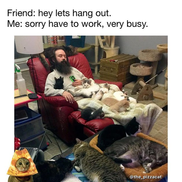 Man in recliner covered with sleeping cats. Friend: hey lets hang out. Me: sorry have to work, very busy.