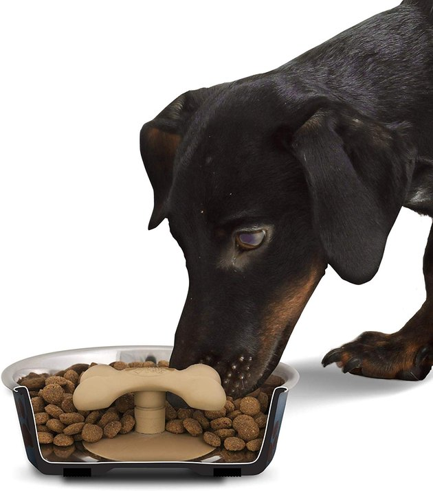 gobble stopper forces dog to eat slowly from bowl