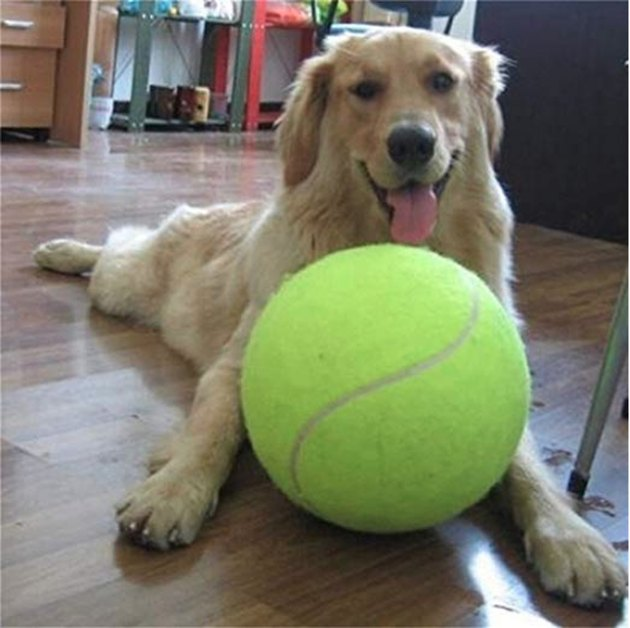 Banfeng Jumbo Tennis Ball