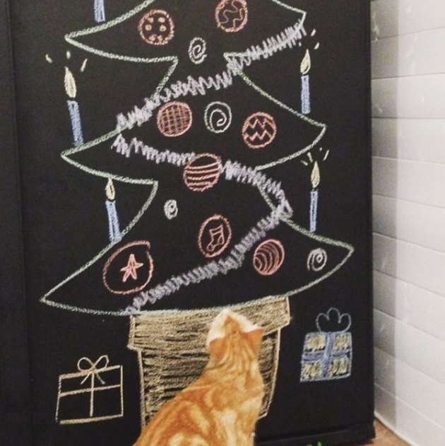 cat stares at chalk drawing of Christmas tree