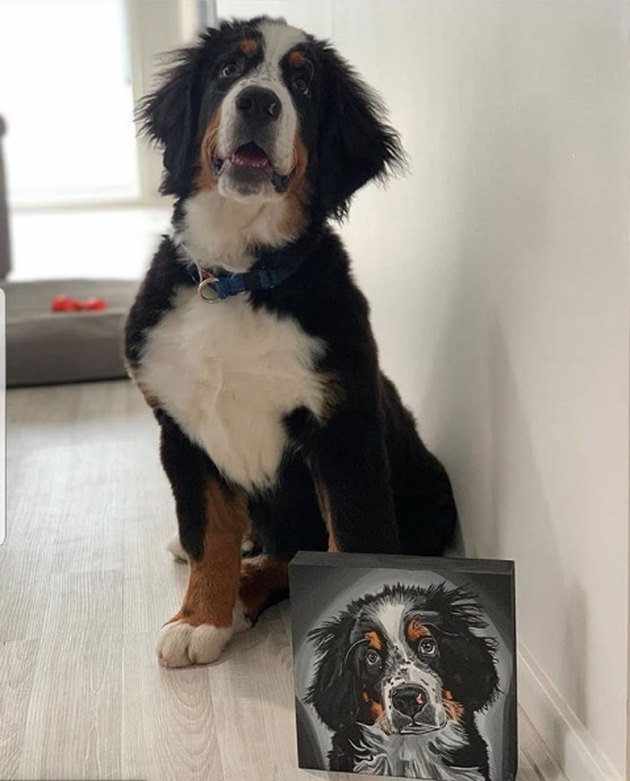 bernese dog posing next to his custom portrait