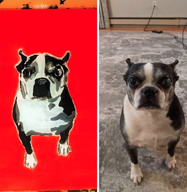boston terrier next to his custom portrait