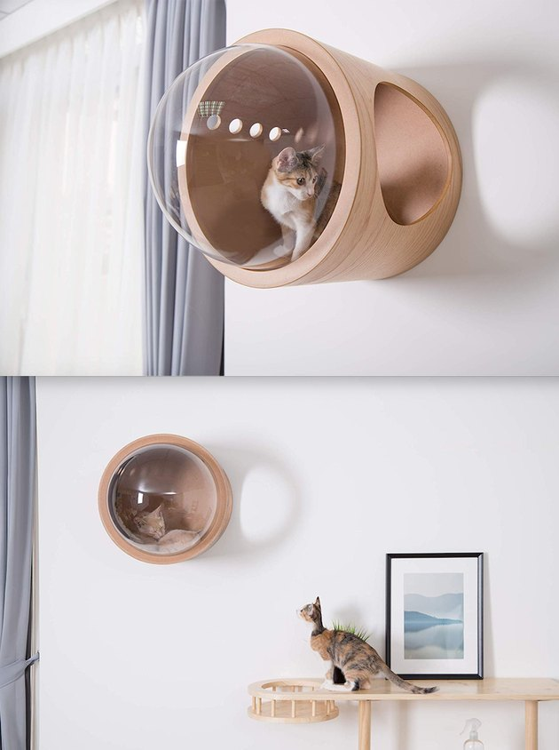 Wall mounted, bubble-shaped cat bed