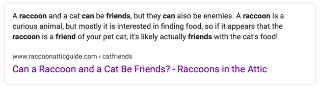 """Raccoons in the Attic's answer to the google question """"can cats and raccoons be friends?"""""""