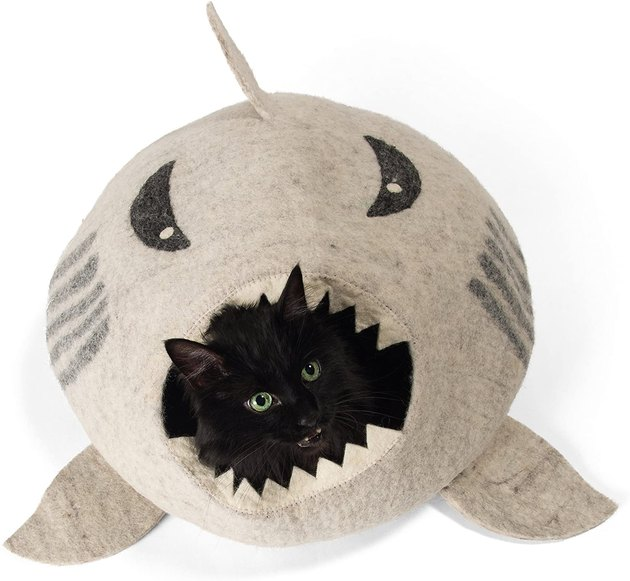 covered cat bed shaped like shark