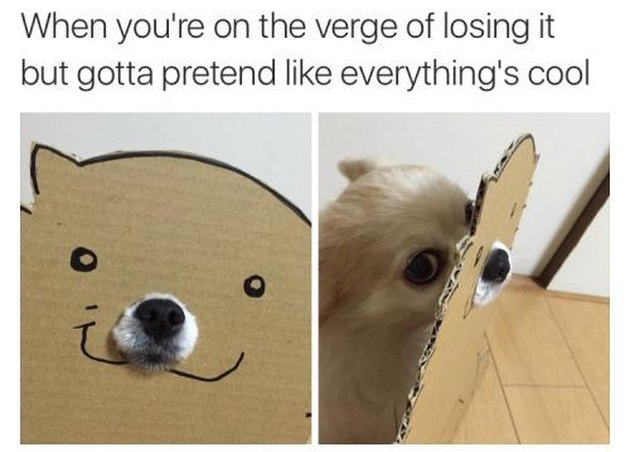 Dog wearing a happy mask. Caption: When you're on the verge of losing it but gotta pretend like everything's cool