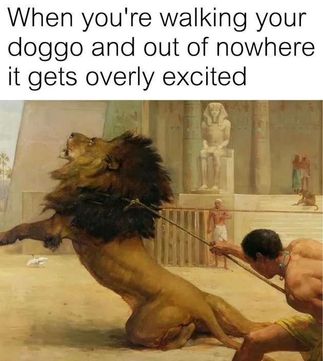 Painting of gladiator lassoing a lion. Caption: When you're walking your doggo and out of nowhere it gets overly excited
