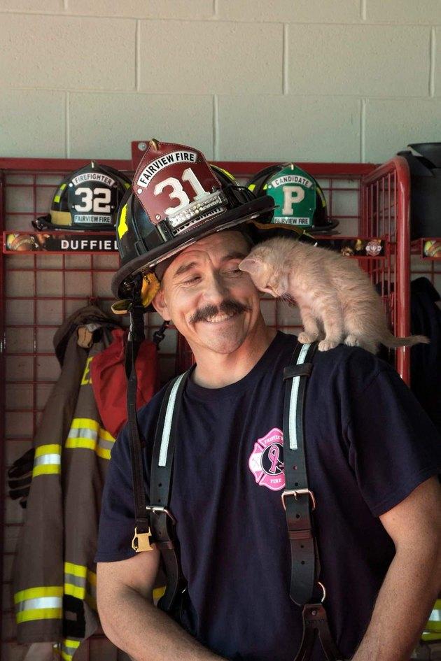 Kitten and a fireman