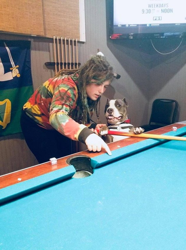 woman and dog play at pool table