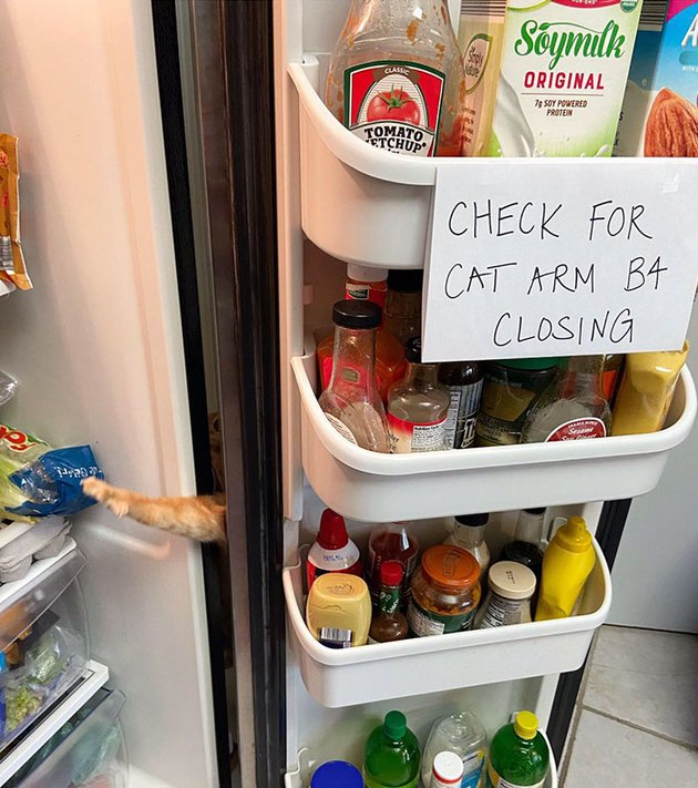 signs warns people to check for cat before closing door
