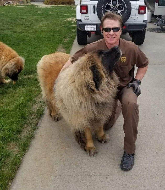 UPS driver hugging fluffy dog