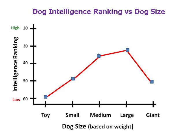 dog intelligence ranking vs size chart