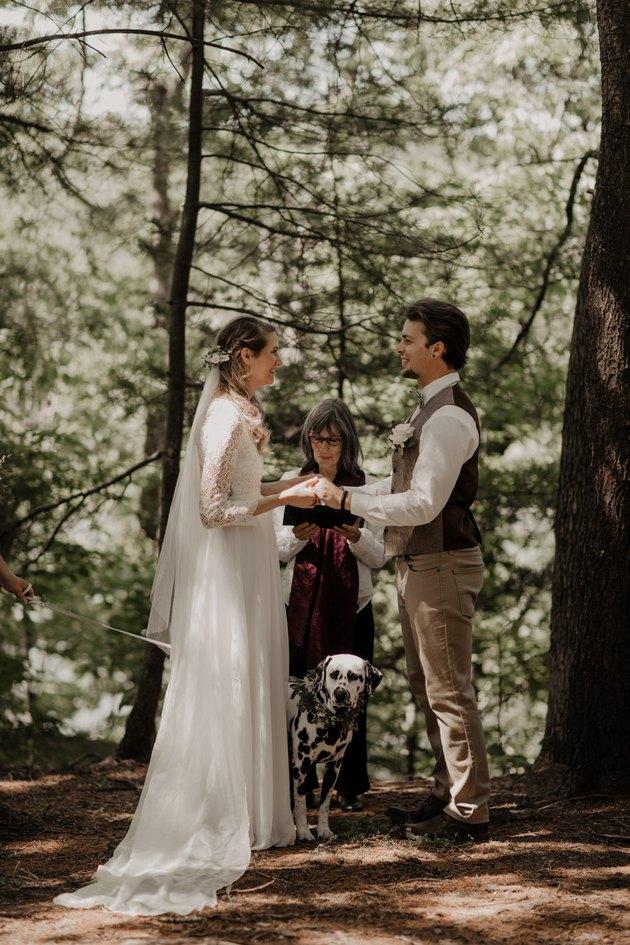 Dalmatian huddles between bride and groom at wedding