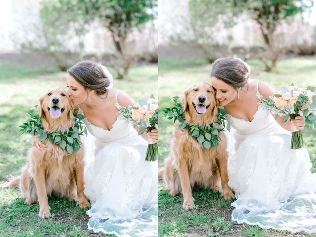 dog in flower collar poses with bride at wedding
