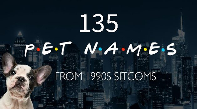 Do you remember these 135 names from '90s television?