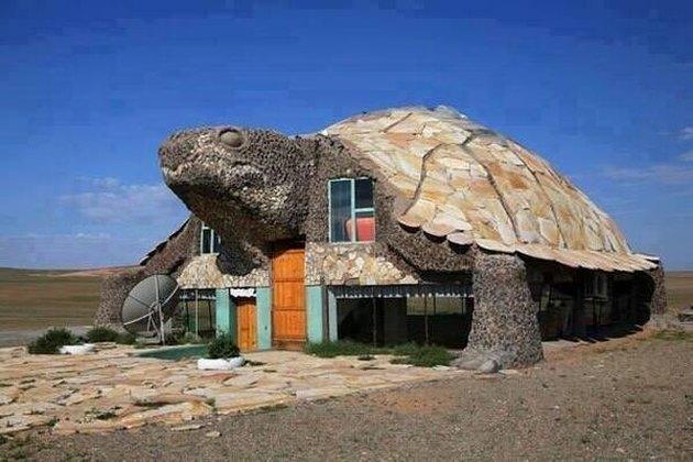 hotel shaped like turtle