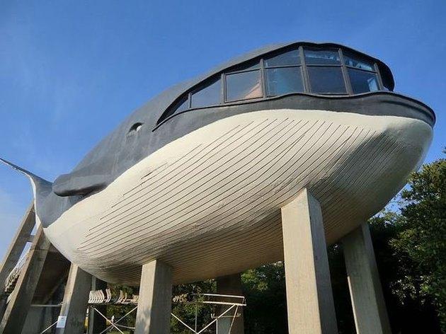 building shaped like a whale