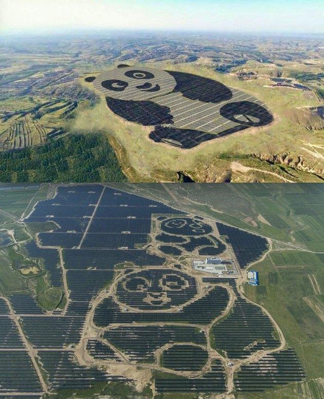 solar panel farm shaped like giant pandas
