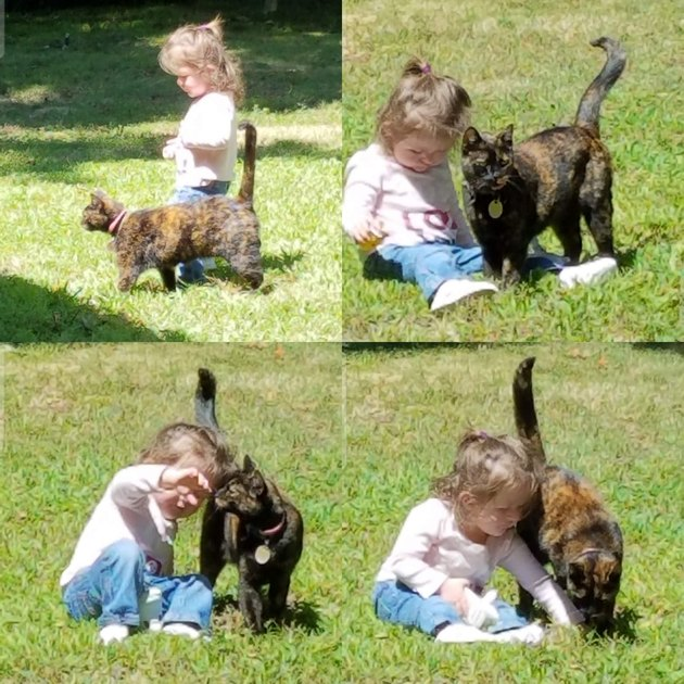 Little girl and cat.