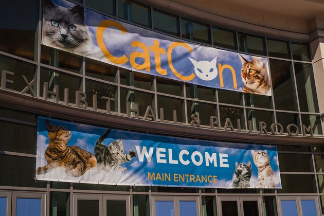 the entrance to CatCon 2019 at the Pasadena Convention Center