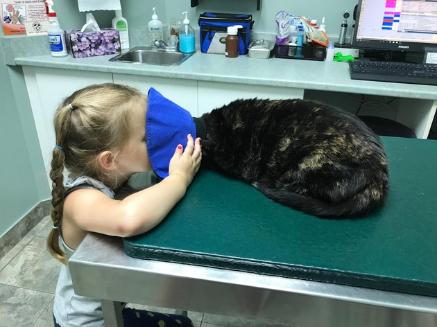 Little girl putting face into cat's Elizabethan collar.