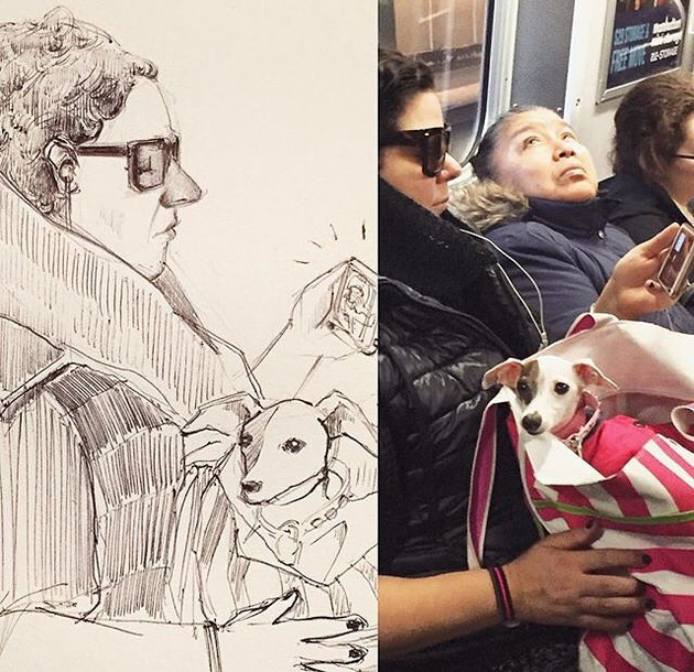sketch of dog in bag on NYC train
