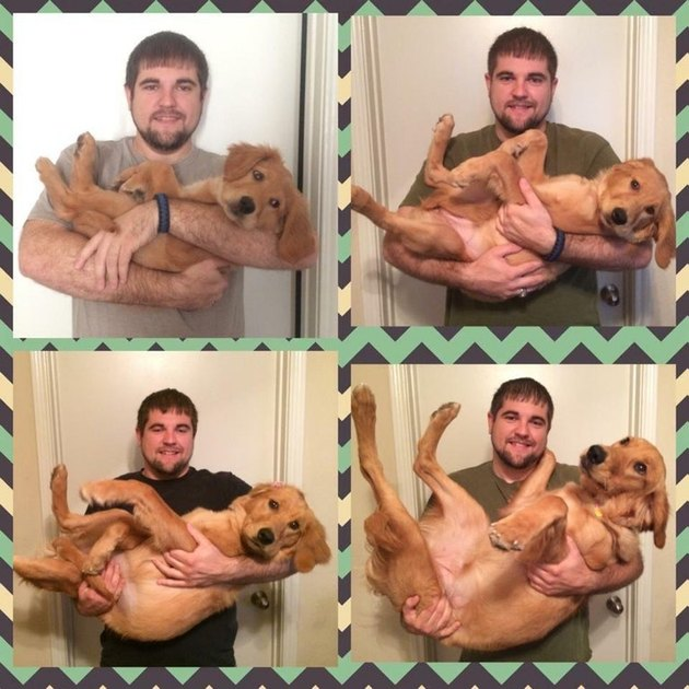 Set of photos of man holding dog as a puppy and as an adult