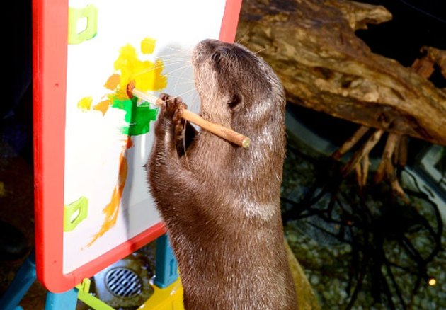 otter painting on a canvas