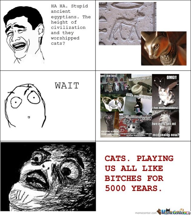 Meme about how Egyptians worshiped cats and now we do too