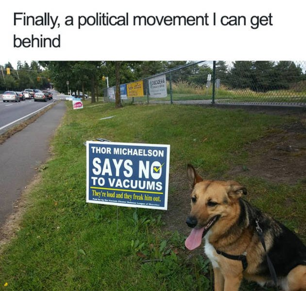 Dog with a political sign against vacuums
