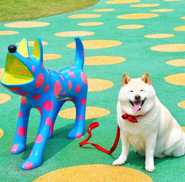 A happy dog with a happy dog statue