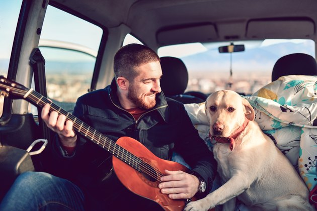 man playing guitar next to dog in van