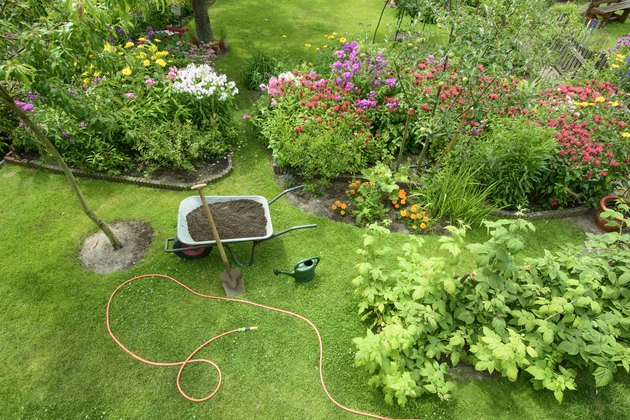 Garden view from overhead