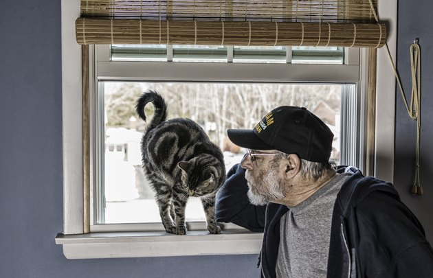 US Navy Vietnam War Veteran Talking to Pet Cat on Windowsill