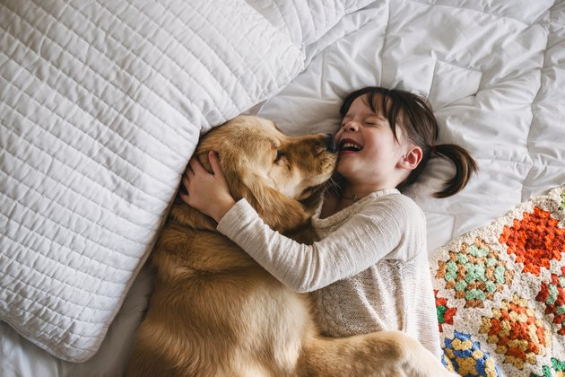 Girl lying on a bed with her golden retriever dog