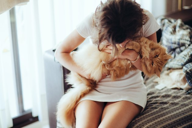 Young woman cuddling furry cat on sofa at home