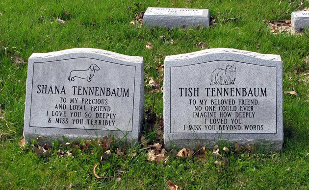 Two Dog Grave Stones
