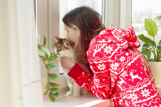 Winter time at home, young girl in winter warm pajamas with a cat looking out the window
