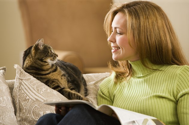 Woman With Pet Tabby Cat on Sofa