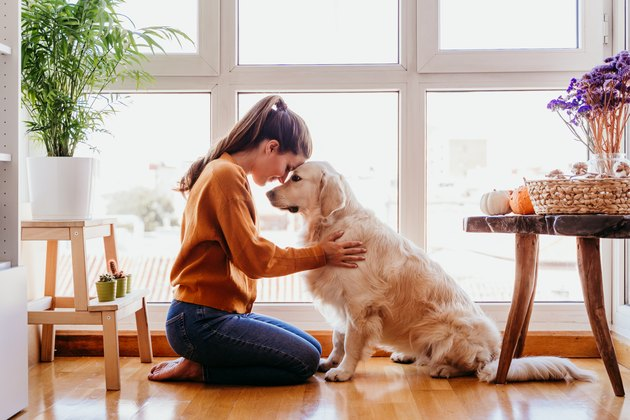woman hugging her adorable golden retriever dog at home