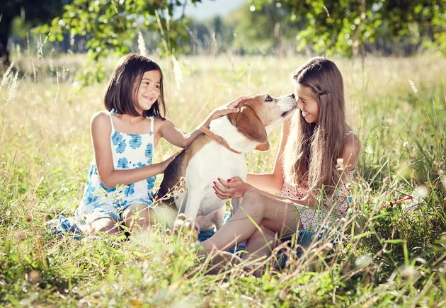Two sisters with dog