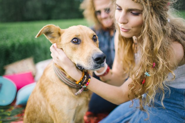 Young beautiful hippie couple with dog in nature