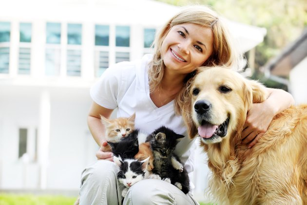 Woman enjoying the outdoors with kittens and dog