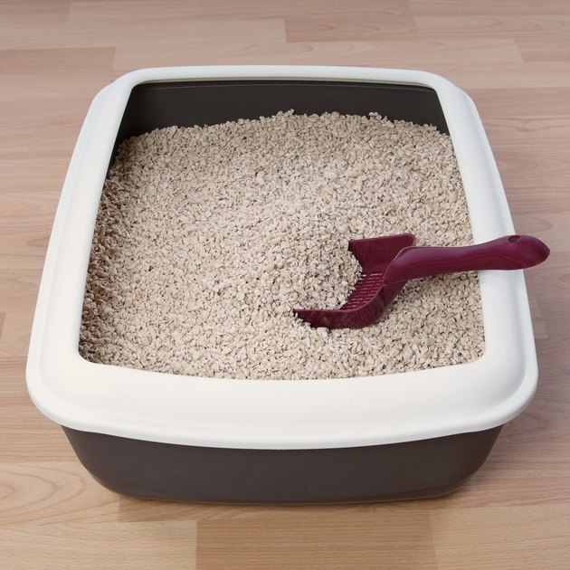 Cat litter box with scooping shovel