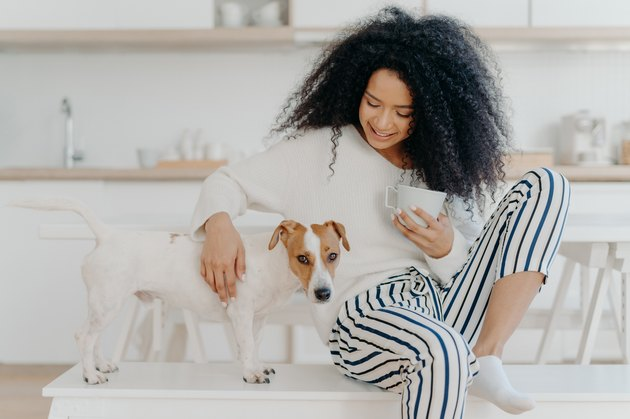 young woman drinks coffee, plays with dog, poses against cozy kitchen interior, express love, togtherness and friendship between animals and people. Domestic atmosphere