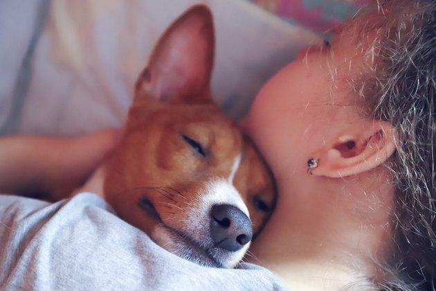 The girl hugs the basenji dog, toned, close up.