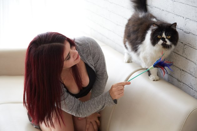 Woman playing with cat at home