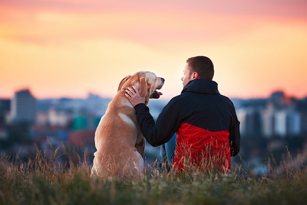 Man with his dog against sunset outside