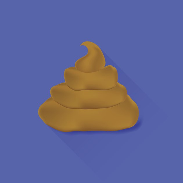Brown Excrement Icon